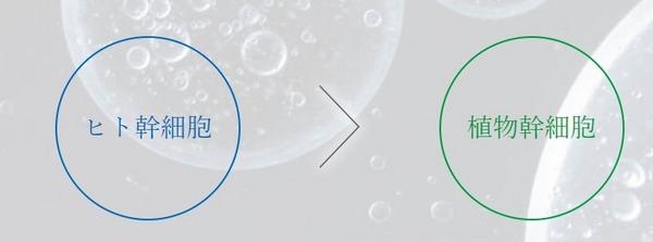 プラモイストのヒト幹細胞培養液